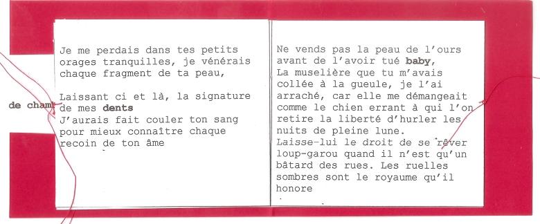Livre - Six décembre deux mille dix septs en robe de chambre 5